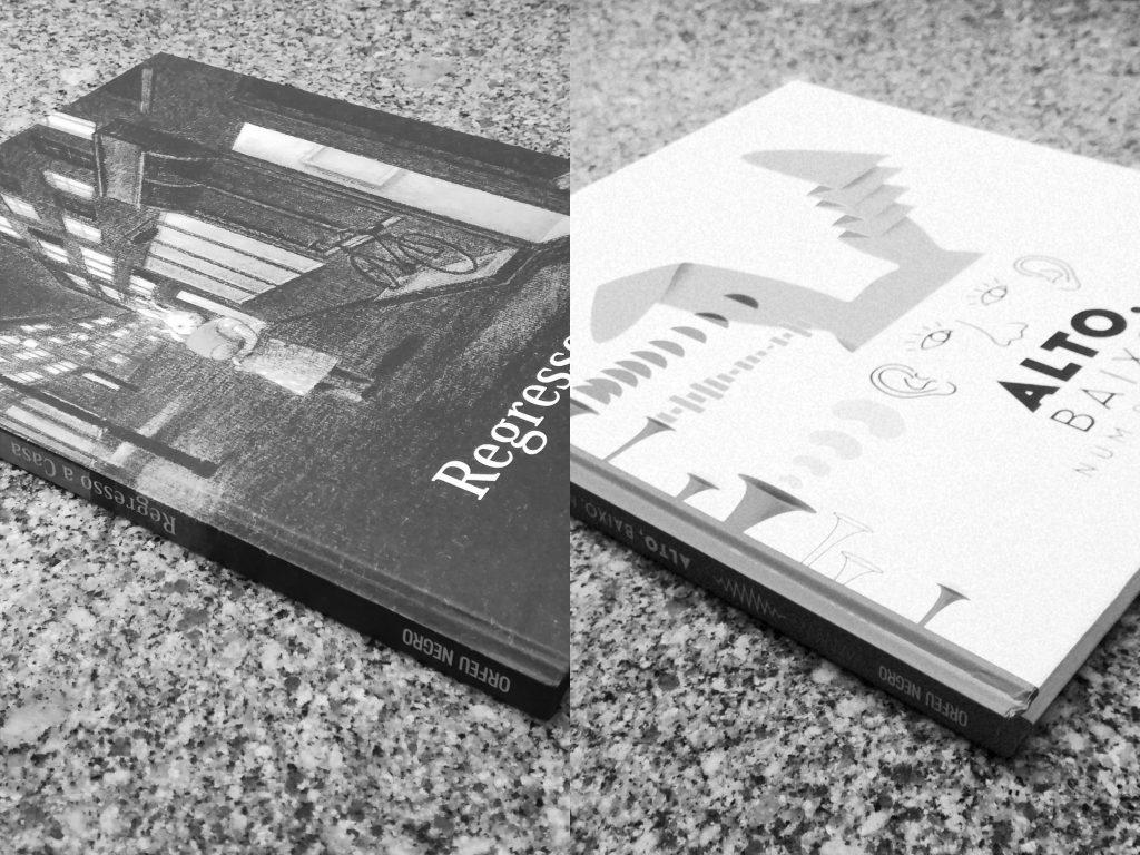 """Recensão dos livros """"Alto, Baixo, Num Sussurro"""" de Romana Romanyshyn e Andriy Lesiv e """"Regresso a Casa"""" de Akiko Miyakoshi, editados pela Orfeu Mini   INTRO"""
